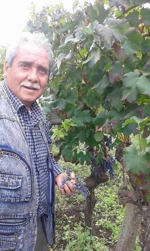 Salvatore mannino mannsalv geneanet for Mobilia linguaglossa